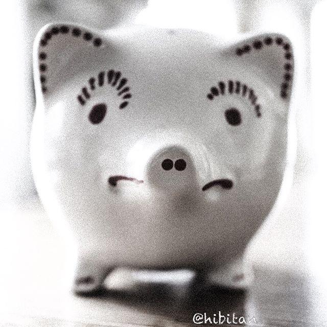 貯金箱って言ったら豚さん(o^^o)これはティファニーのだよ。