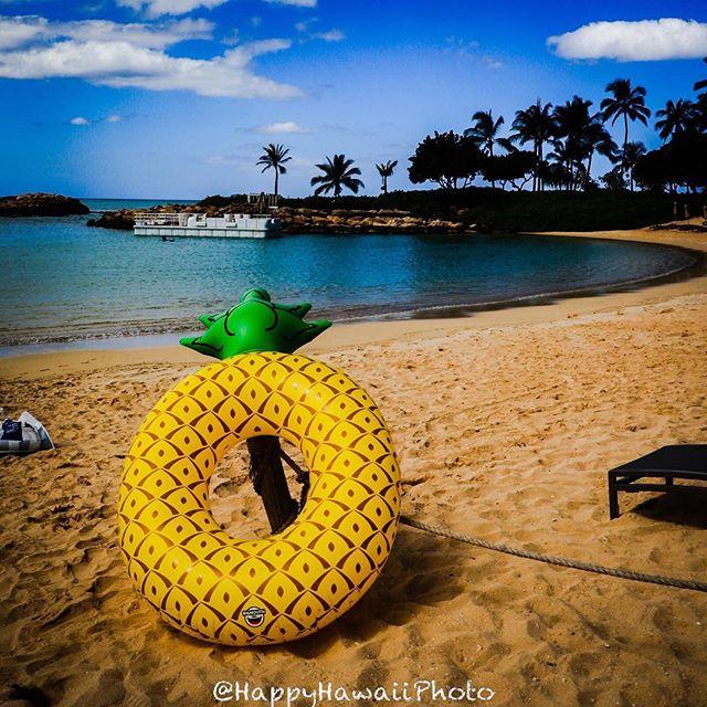 201809hawaii day7 pineapple