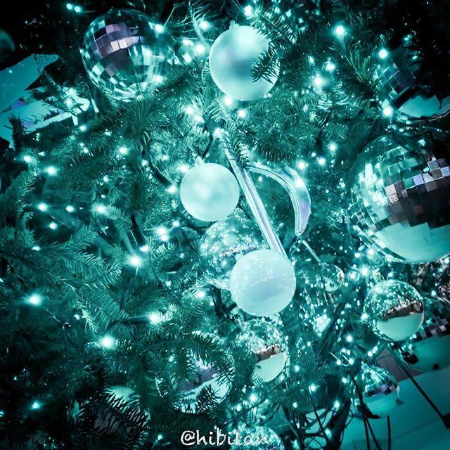 YAMANO's Christmas Tree!!